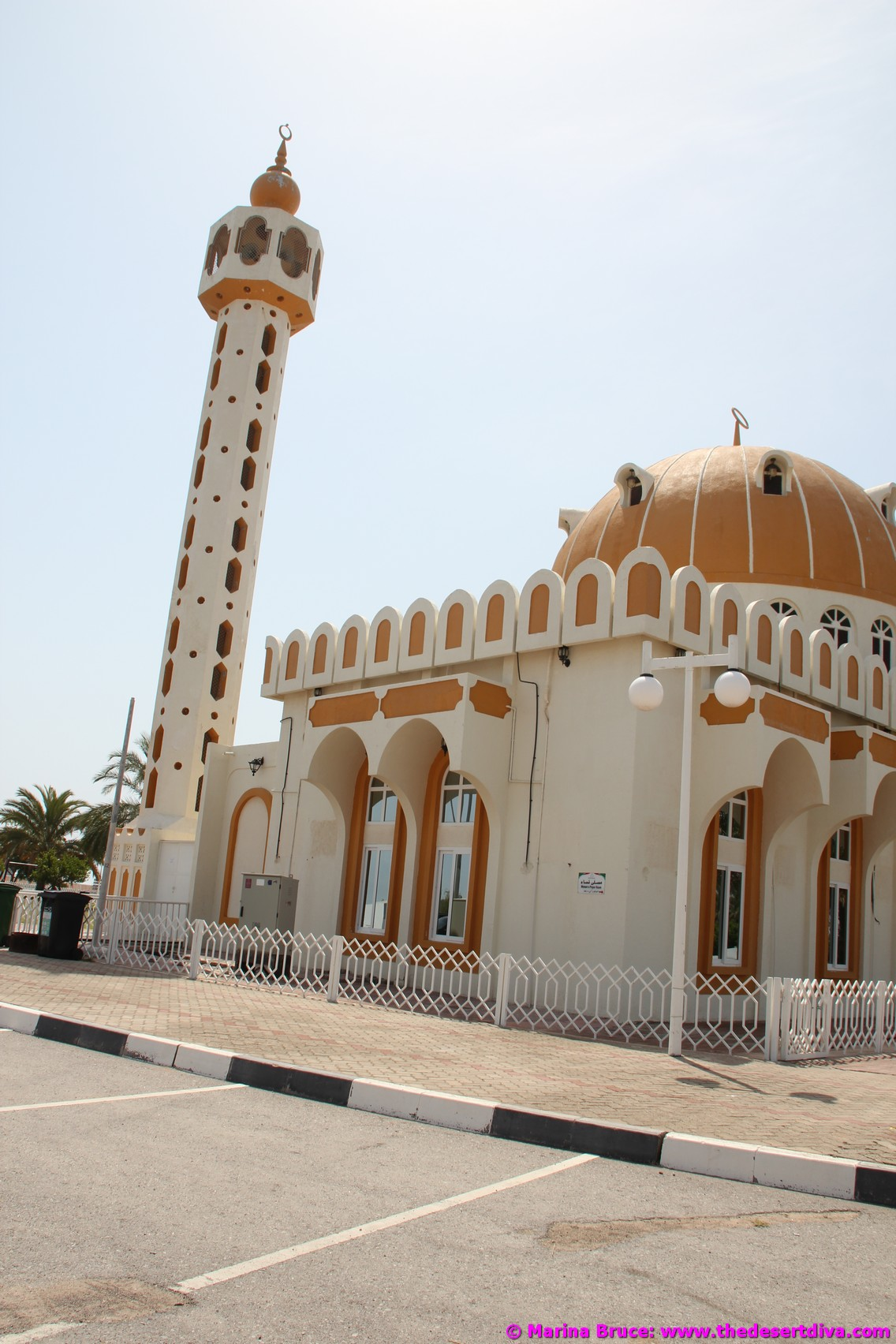mosques13