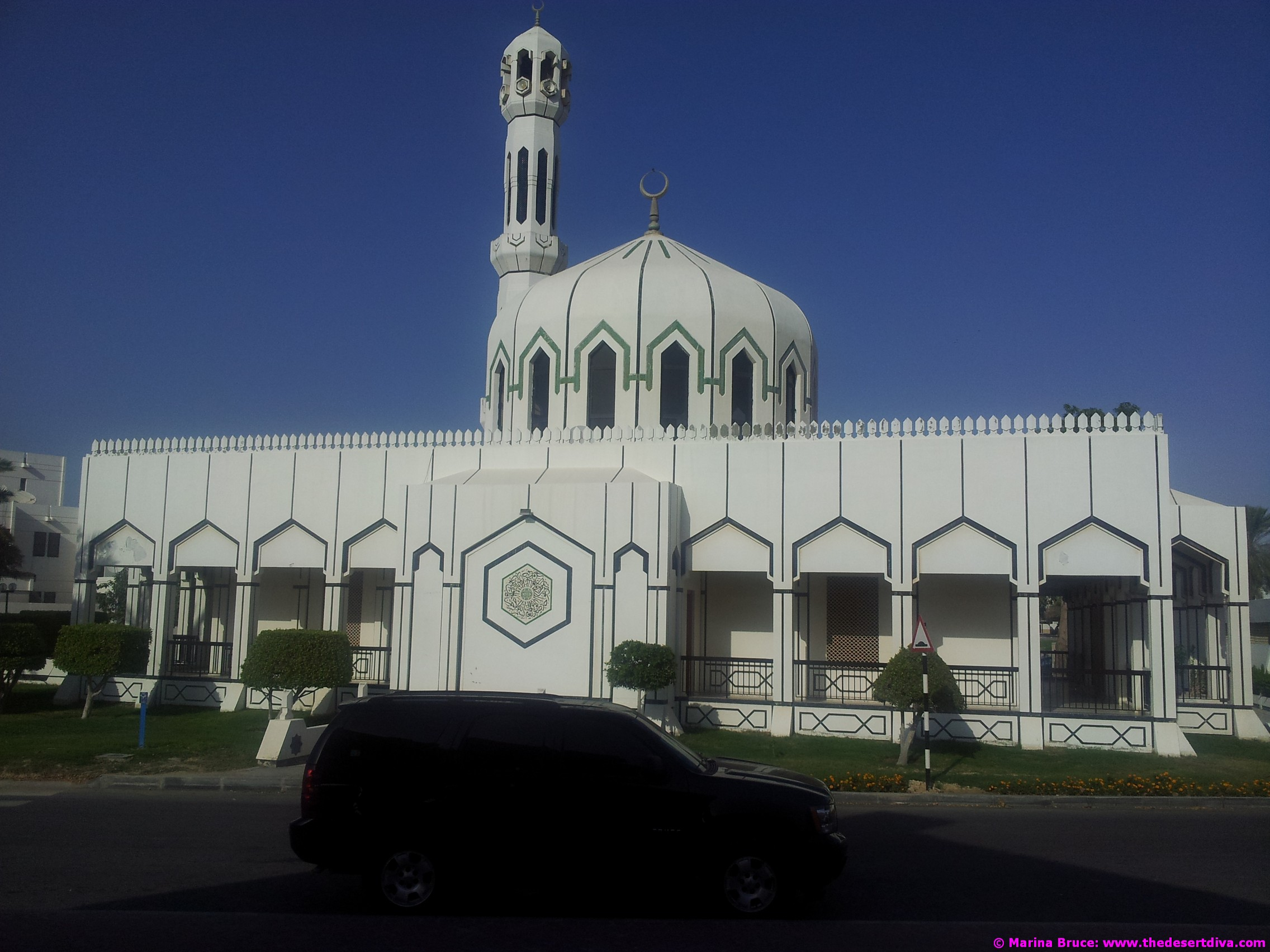 mosques16