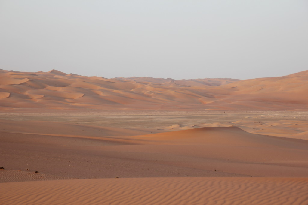 Majestic dunes in the Liwa Crescent