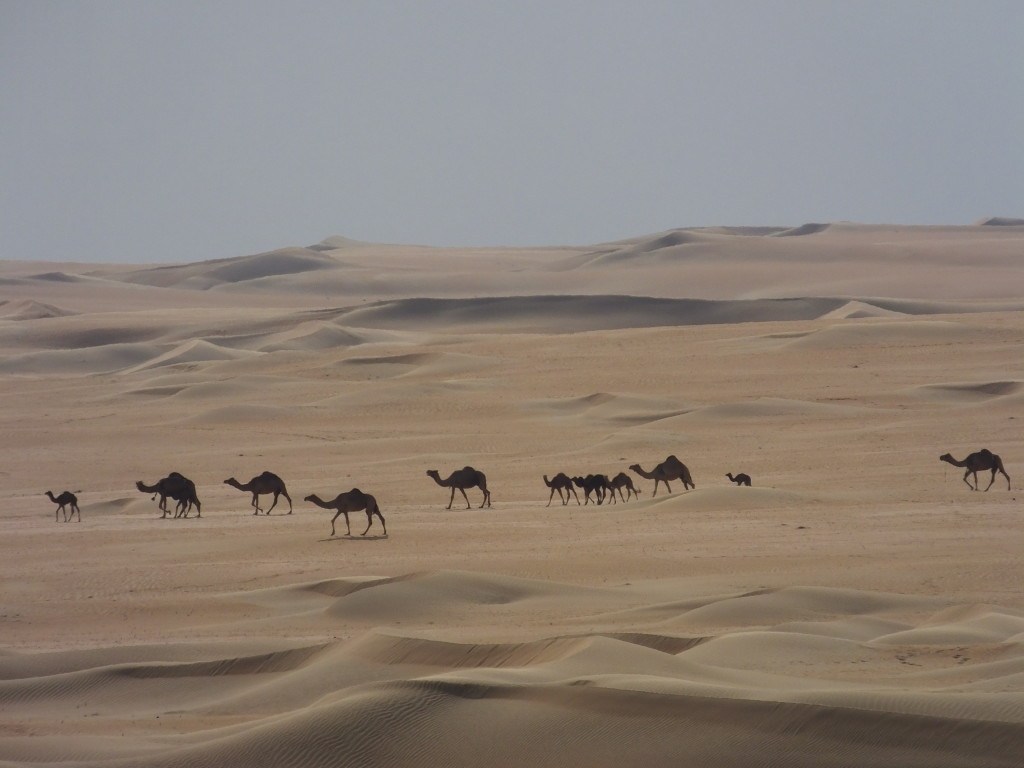 The vastness of the Himeem area