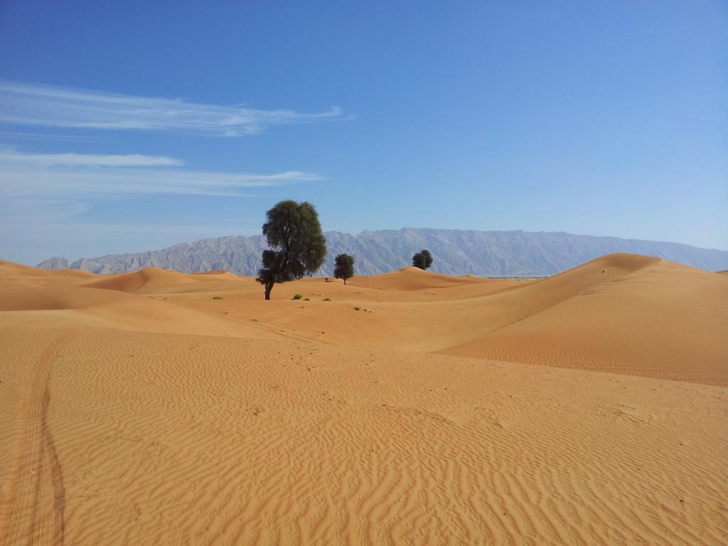 Zakher area, Al Ain