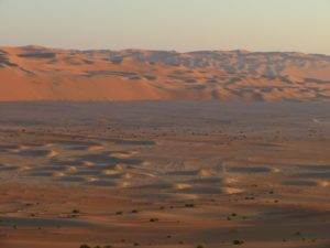 Dunes starting to form in the Liwa Crescent Salt Flats
